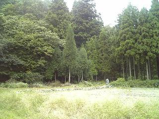 fuku_kanro04.jpg